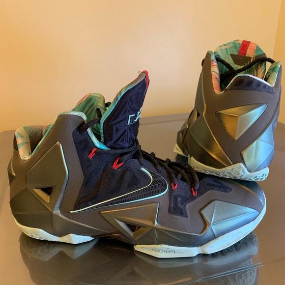 Nike Shoes | Nike Lebron 1 Kings Pride